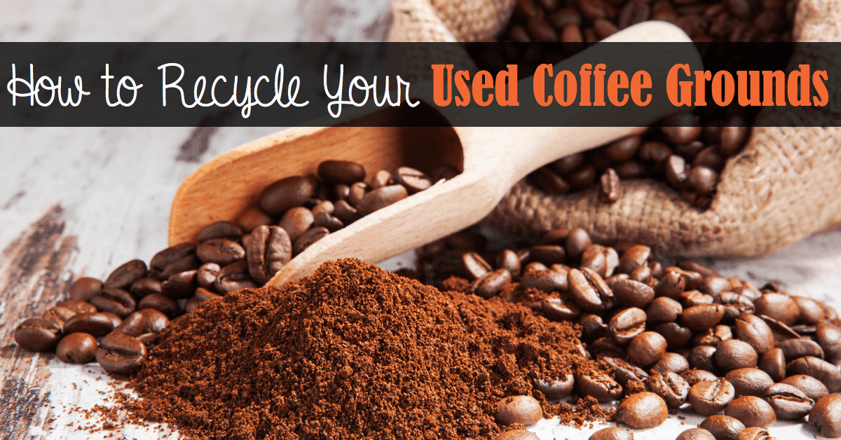 Great Ways To Recycle Your Used Coffee Grounds Page 2 Of 2