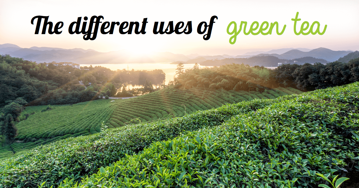 The Different Uses Of Green Tea