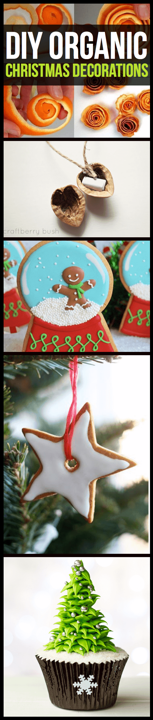 12 DIY Organic Christmas Decorations That Will Make Your Home Look and Feel Sweeter